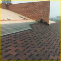 shingle roofing7